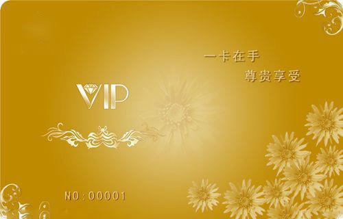 vip积分卡档案表_餐会员卡制作1000张储值卡机器VIP积分卡会