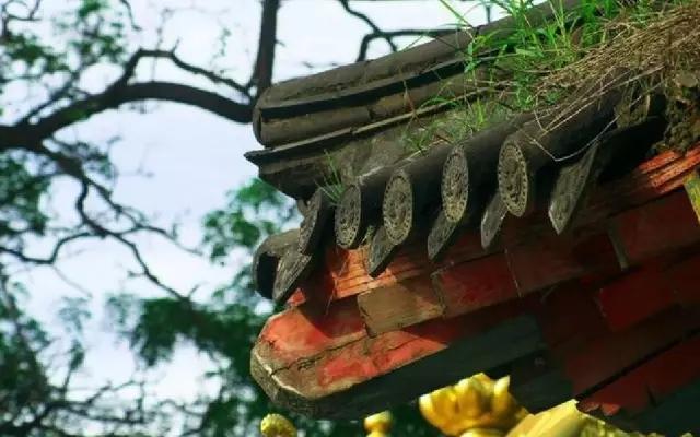 当雨水叮咚划过中式建筑的屋檐, 瓦当挡住的又是何人的风雨?图片