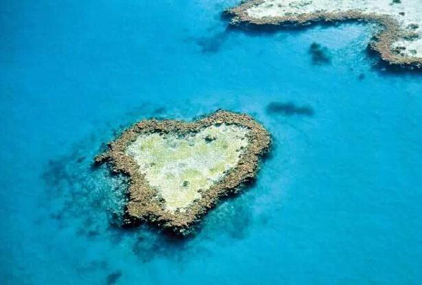红树林也温柔 新喀里多尼亚   新喀里多尼亚是太平洋的一系列岛屿