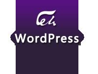 Wordpress<em>平台</em>&Discuz!论坛(Webmin LAMP)